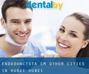 Endodonctsta em Other Cities in Hubei (Hubei)